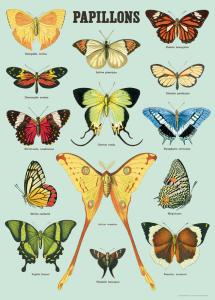 poster - affiche Cavallini papillons 3