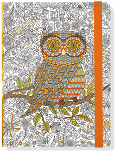 JOURNAL HIBOU 16 x 21 CM A COLORIER