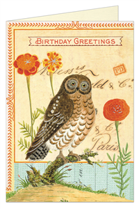 CARTE POSTALE DOUBLE + ENVELOPPE CAVALLINI HAPPY HIBOU