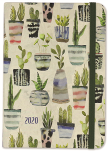 2020 SM WATERCOLOR SUCCULENTS CAL